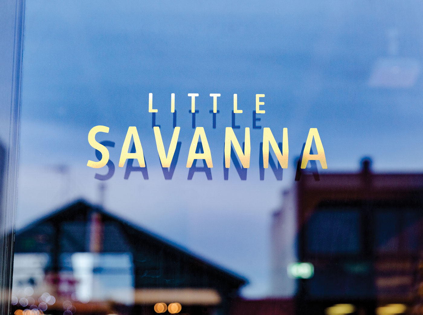 LSL Little Savanna 01