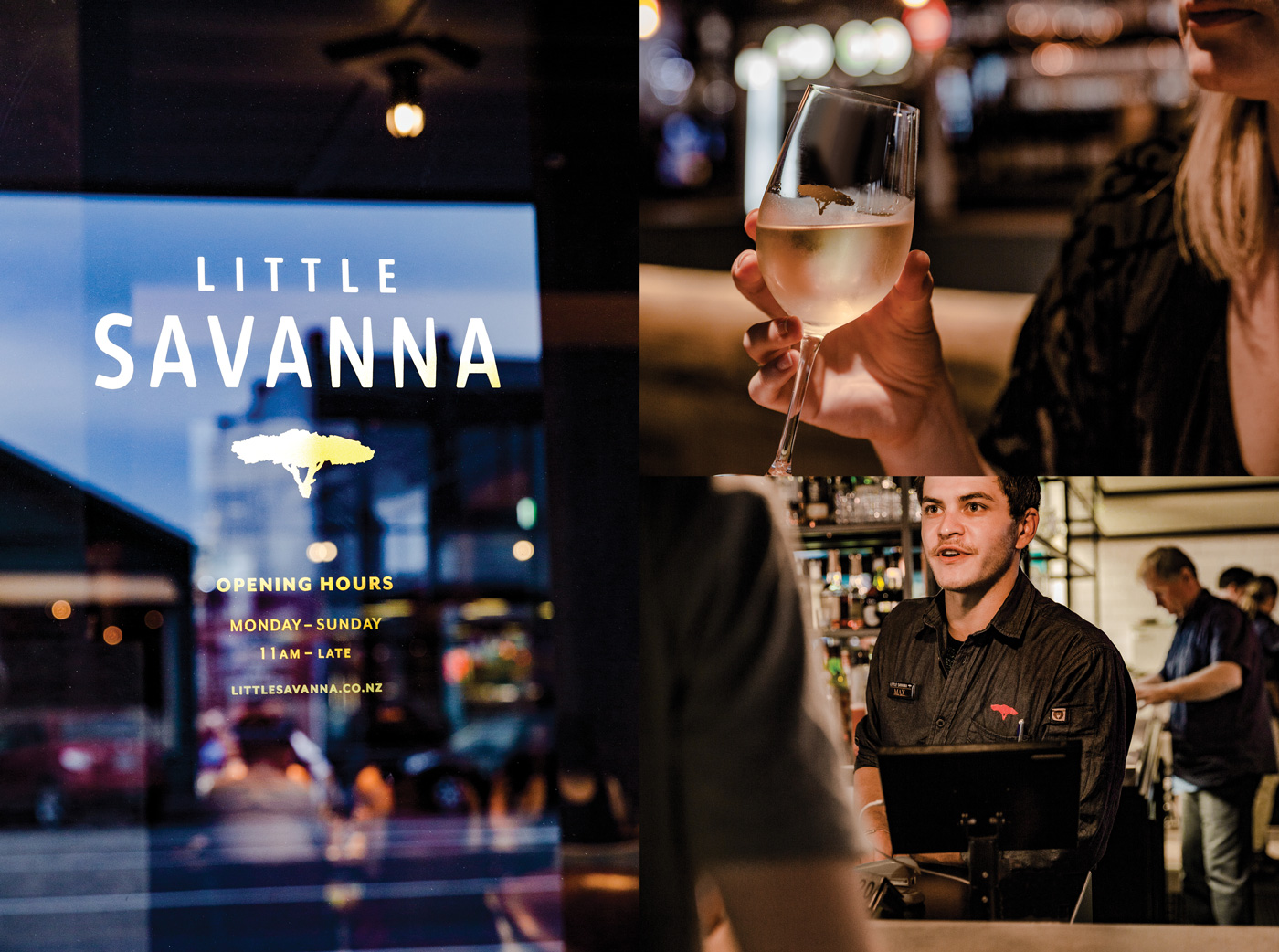 LSL Little Savanna 05